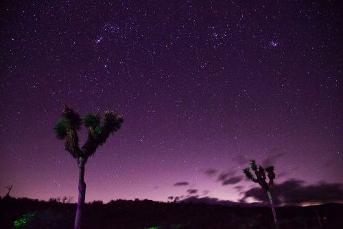 Osservazione stelle